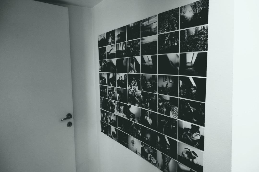 fotovegg2
